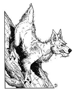 Climbdog