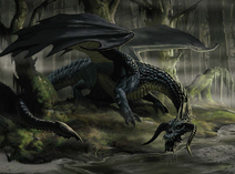 Black Dragon 4e