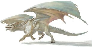 White Dragon 5e