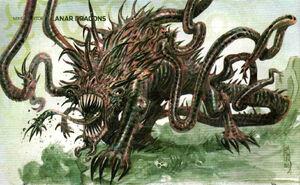 Chole Dragon