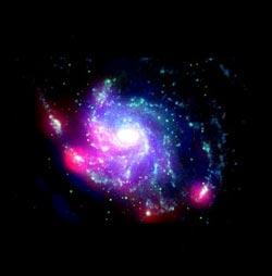 Vela Galaxy