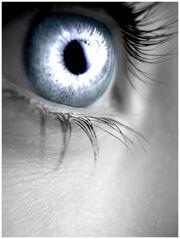 Silver Eye by Sugargrl14