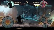 Fungus raid win