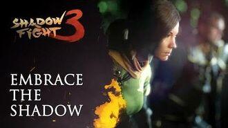 Embrace the Shadow Shadow Fight 3 retrospective