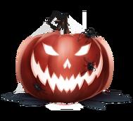 Helm hw19 pumpkin