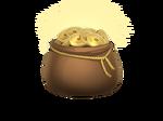 Bag coins