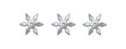 Ranged silver shurikens