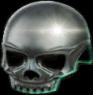 Skullcap