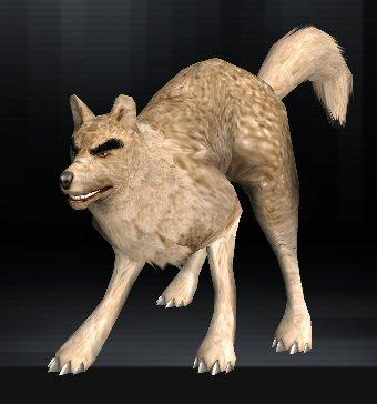 Wolf 07 1