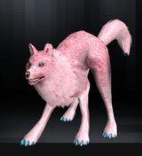 Wolf 05 1