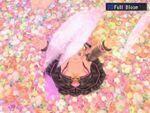 Sh3 full bloom