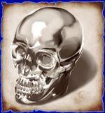 Warriors skull
