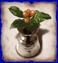 Daphne fruit3