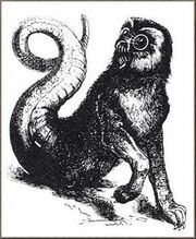 AmonDictionnaire Infernal
