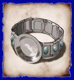 Silverbracesh3