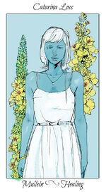 Virágos kártya Catarina
