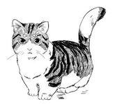 Kódex Miau Ce-Tung