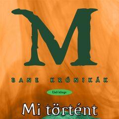 Венгерская обложка