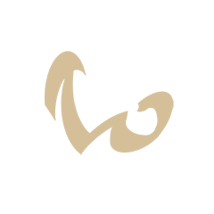 Дар (Gift)