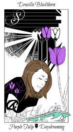 Virágos kártya Drusilla