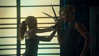 Clary combat
