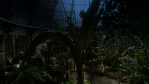 Jardin Institut