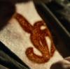 Rune necromancie