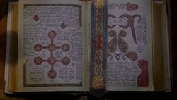 TMI113 Book of the White 01