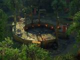 Бойцовские ямы