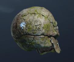 Нахмурившийся череп (точка)