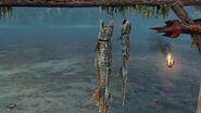 FischereiBilder2