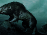 Мордорские крысы