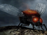 Morgai-Fliegen