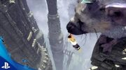 ¡NUEVO! Gameplay Large Tower The Last Guardian