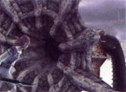 185px-Unused Colossi Image 12
