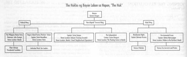 Huk network (Shadowrun Sourcebook, Cyberpirates)