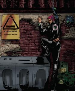 Panopticans from Shadowrun Sourcebook, 10 Gangs
