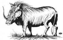 Critter Golden Boar