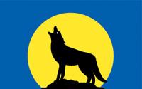 Flag of the Ute Nation