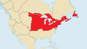 Greek Syndicates (North America)