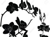 Black Orchid Triad