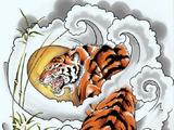 Nine Tigers Organization