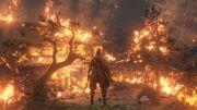 Hirata-estate-burning