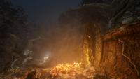 Hidden Forest View 02