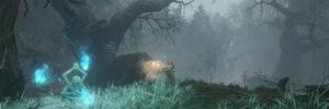 Hidden Forest 01