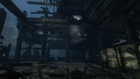 Hidden Forest View 04