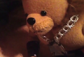 BearH2.png