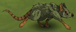 Leaf Rat