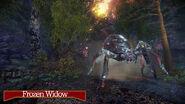 785723700 preview frozen widow