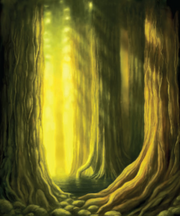 Cozal Forest